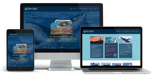 Brier Island Whale Watch Website Design by Whatasite.com